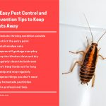 11 Easy Pest Control and Prevention Tips to Keep Pests Away
