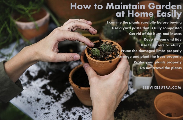 How to Maintain Garden at Home and Keep It Healthy Easily