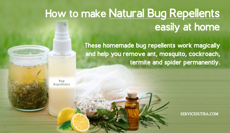 Natural Bug Repellents: These Homemade Bug Repellents Works Magically
