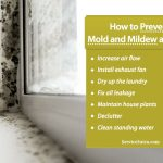 How to Prevent Mold and Mildew Infestation Easily at Home