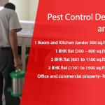 Pest Control Delhi Charges: Bedbug, Termite, Cockroach