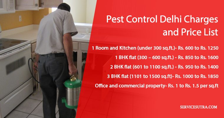 Pest Control Delhi Charges and Price List: Bedbug, Termite, Cockroach etc