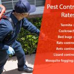 Pest Control Gurgaon Rates and Prices (Termites, Bedbugs, Cockroach)