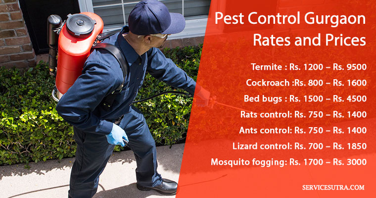 Pest Control Gurgaon Rates & Prices (Termites, Bedbugs, Cockroach)