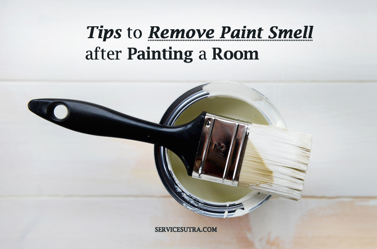 24 Tips To Remove Paint Smell After Painting A Room Easily