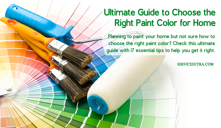 Ultimate Guide to Choose the Right Paint Color for Your Home